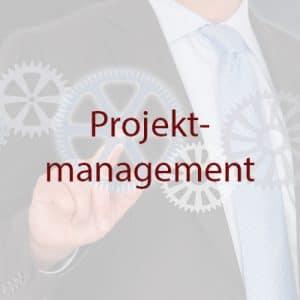Projekte Projektmanagement weiss